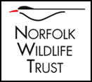 Norfolk Wildlife Trust – Cley Marshes